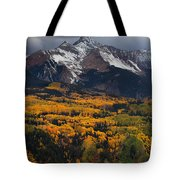 Mountainous Storm Tote Bag