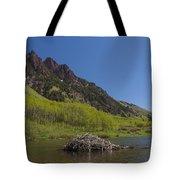 Mountains Co Maroon Lake 4 Tote Bag