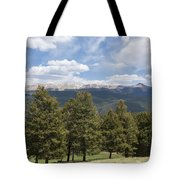 Mountains Co Mueller Sp 1 Tote Bag