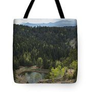 Mountains Co Mueller Sp 15 Tote Bag