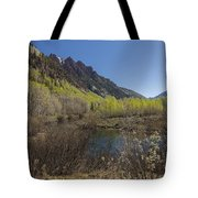 Mountains Co Sievers 3 Tote Bag