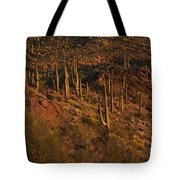 Mountainside Of Cacti Tote Bag