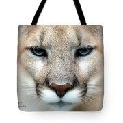 Mountian Lion Tote Bag