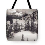 Mountt Sarbach And The North Tote Bag