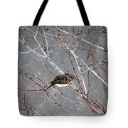 Mourning Dove Asleep In Snowfall Tote Bag