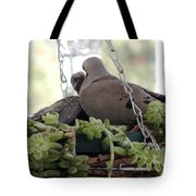 Mourning Dove Feeding Baby Dove Tote Bag