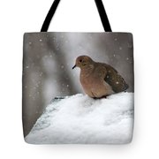 Mourning Dove In Snow Tote Bag