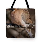 Mourning Dove Pictures 32 Tote Bag