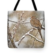 Mourning Dove Pictures 68 Tote Bag