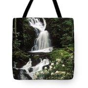 Mouse Creek Falls - Fs000675 Tote Bag