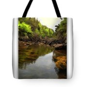 Mouth Of The Brook - Calm - Shallow Water Tote Bag