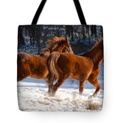 Moving In Motion 2 Tote Bag