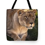 Moving In Tote Bag