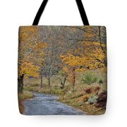 Moving On Down The Road Tote Bag