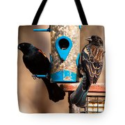 Mr. And Mrs. Red Winged Blackbird Tote Bag
