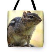 Mr. Chips Tote Bag