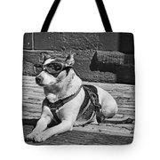 Mr. Cool Tote Bag