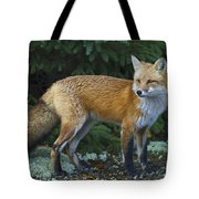 Mr. Fairy Tale.. Tote Bag
