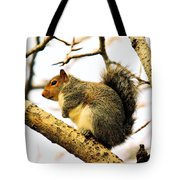 Mr Fat And Sassy Tote Bag