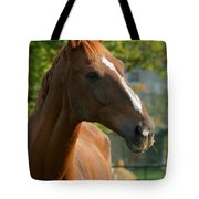 Mr Handsome Tote Bag