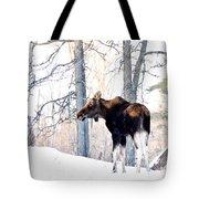 Mr. Moose Tote Bag