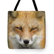 Mr Red Portrait Tote Bag