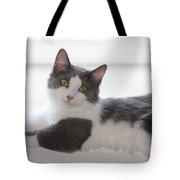 Mr. Scarlow Tote Bag