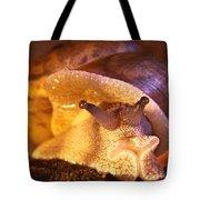 Mr. Snail Tote Bag