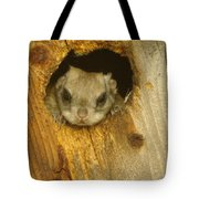 Mr Squirrel Answers The Door  Tote Bag