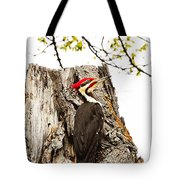 Mr.pileated Poses Tote Bag