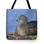Mrs. Mallard Tote Bag