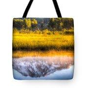 Mt Adams Reflection Tote Bag