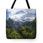 Mt. Aspiring National Park Peaks Tote Bag