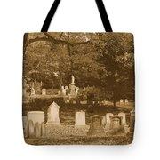 Mt Auburn Cemetery 13 Sepia Tote Bag