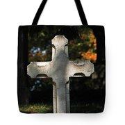 Mt Auburn Cemetery 9 Tote Bag