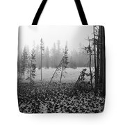Mt Bachelor Road Tote Bag