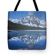 1m3641-mt. Chephren Reflect Tote Bag