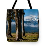 Mt Cook Through Trees Tote Bag