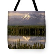 Mt Drum Over Willow Lake Wrangell-st Tote Bag