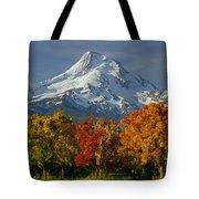 1m5117-mt. Hood In Autumn Tote Bag