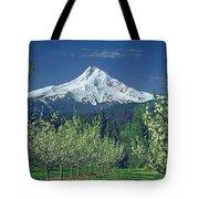 1m5125-mt. Hood In Spring Tote Bag