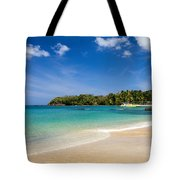 Mt. Irvine Beach Again Tote Bag