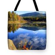 Mt. Monadnock Reflection Tote Bag