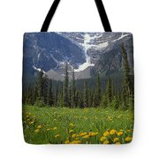 1m3613-mt. Patterson And The Snowbird Glacier Tote Bag