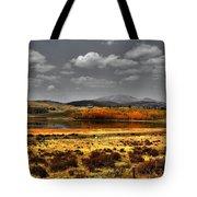 Mt. Silverhills In Silver Tote Bag
