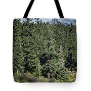 Mt Washington Behind Clear Lake Tote Bag