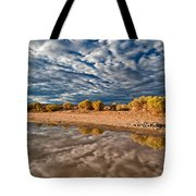Mud Puddle Tote Bag
