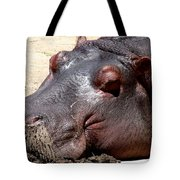 Muddy-faced Hippo Tote Bag