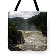 Muddy Water Tote Bag