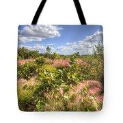 Muhly Grass And Sea Grape Plants Along A Florida Coastline Tote Bag